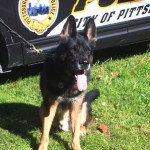 Pittsburgh-K-9-Officer-Rocco